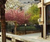 École Horizon Montessori Paris