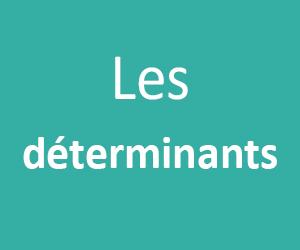 Les Déterminants CE1 - CE2
