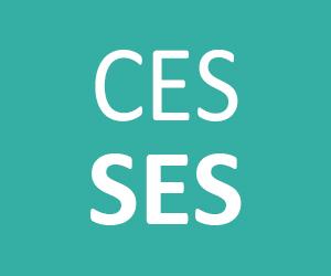 Les homophones grammaticaux ces et ses pour le CE1 CE2 CM1 CM2