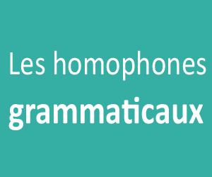 Les homophones grammaticaux PDF