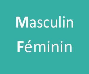 Le Masculin et le Féminin CP -CE1 - CE2