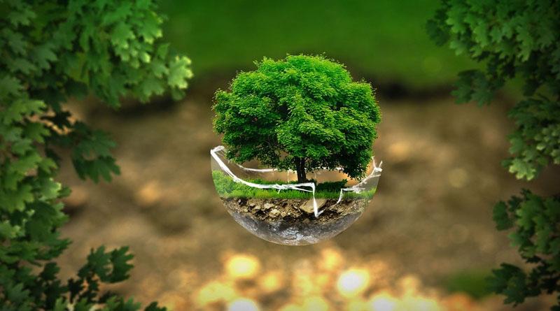 Livre sur la nature, l'écologie et l'environnement pour les enfants