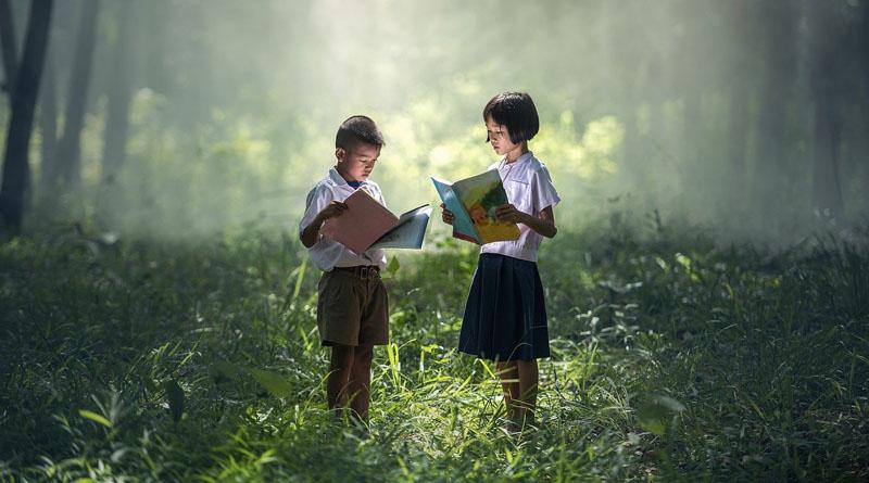 Livre & littérature jeunesse
