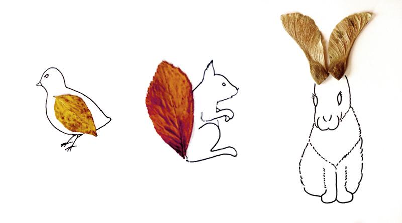 Herbier des animaux pour les enfants